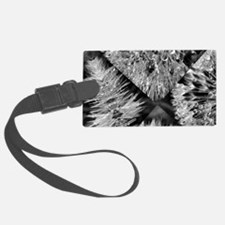 fractured beauty Luggage Tag