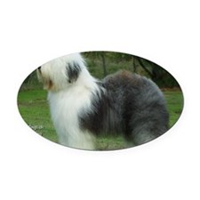 Old English Sheepdog 9F054D-18 Oval Car Magnet