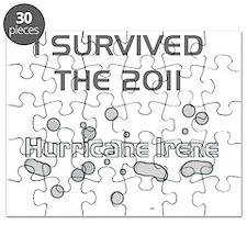 Survived 2011 Irene Hurricane Puzzle