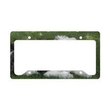COVER SPENCER with title License Plate Holder