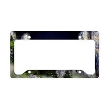 d the moon and mist 2011 License Plate Holder