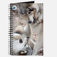 poster-mini-tyler Journal