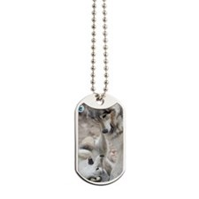 poster-mini-tyler Dog Tags