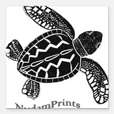 "Sea Turtle Square Car Magnet 3"" x 3"""
