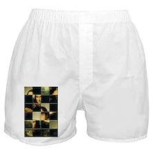 Mona Lisa Puzzle Boxer Shorts