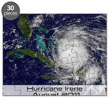 Hurricane Irene poster Puzzle
