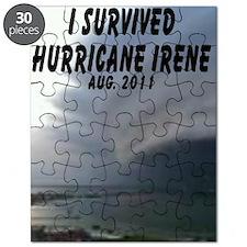 Hurricane Irene Puzzle