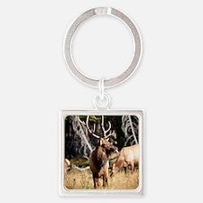 Elk (6) Square Keychain