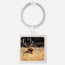 Elk (14) Square Keychain