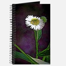 One Daisy Journal