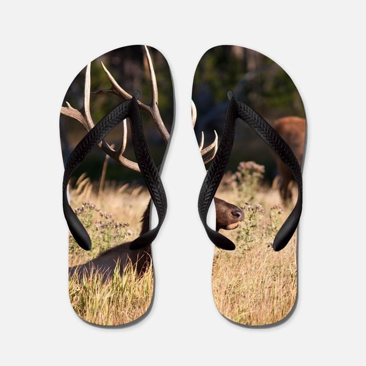 Elk (8) Flip Flops