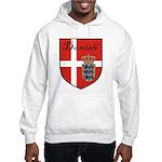 Danish Flag Crest Shield Hooded Sweatshirt