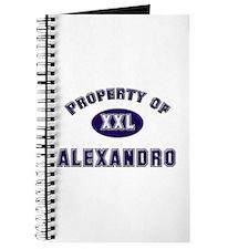 Property of alexandro Journal
