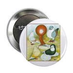 Pigeon Color Book Button
