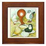 Pigeon Color Book Framed Tile