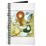 Pigeon Color Book Journal