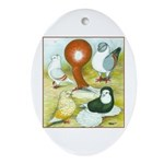 Pigeon Color Book Oval Ornament