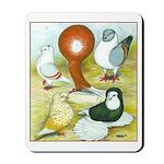 Pigeon Color Book Mousepad
