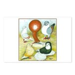 Pigeon Color Book Postcards (Package of 8)