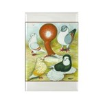 Pigeon Color Book Rectangle Magnet