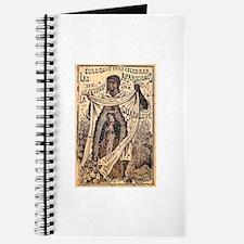 Virgen de Guadalupe - Posada Journal