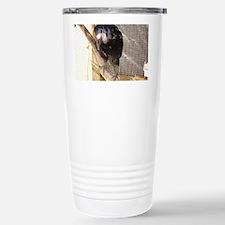 Baby the Rook Travel Mug