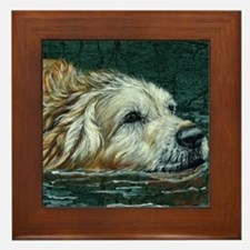 golden old swimmer Framed Tile