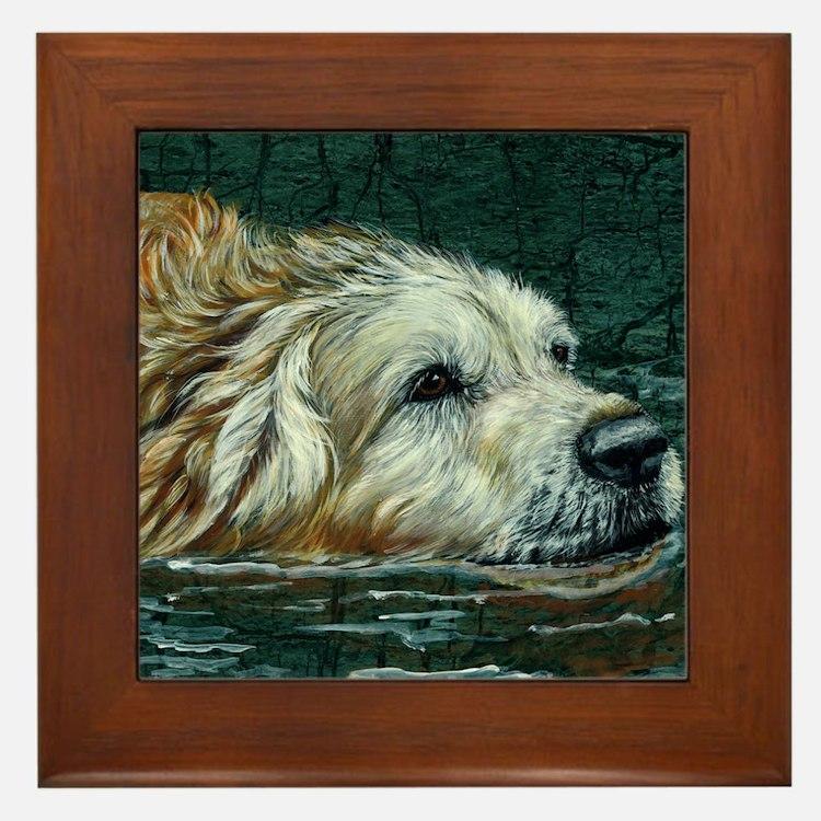 golden old swimmer Framed Tile