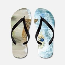 Golden Surf runners Flip Flops