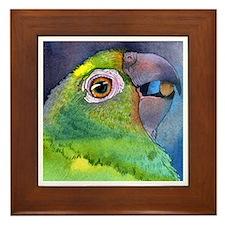 Cute Avian Framed Tile