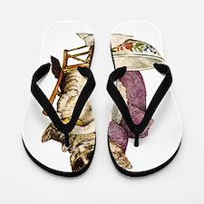 Beatrix Potter_Tom Kitten copy Flip Flops