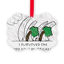 NYC Hurricane 2011 Ornament