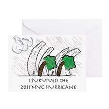 HURRICANE IRENE Greeting Card
