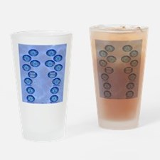swimflip1 Drinking Glass