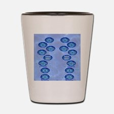 swimflip1 Shot Glass