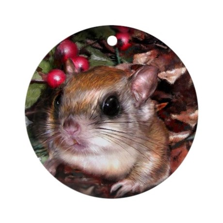 Flying Squirrel Christmas Ornament (Round)