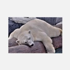 Polar Bear - LPF Rectangle Magnet