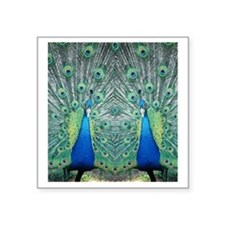 "peacockflips Square Sticker 3"" x 3"""