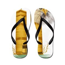 Golden Twin Towers and Eagle Trans Flip Flops