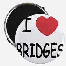 BRIDGES Magnet