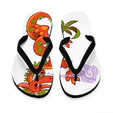 VSBvic_Dragon Flip Flops