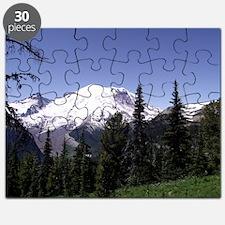 Mt. Rainier Puzzle