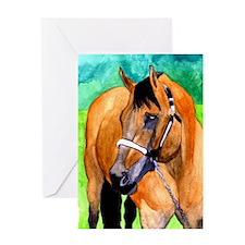 Buckskin Quarter Horse Greeting Cards