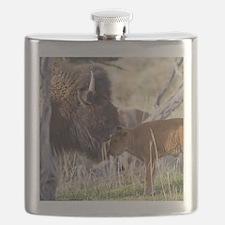 Bison (7) Flask