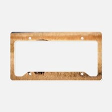 Bison (9) License Plate Holder