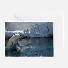 Beluga Whale jumping 2 Greeting Card