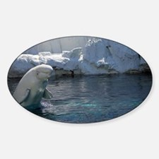 Beluga Whale jumping 2 Decal