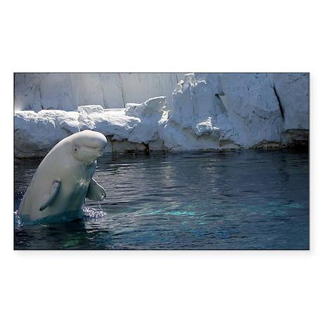 Beluga Whale jumping 2 Sticker (Rectangle)