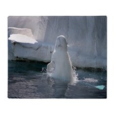 Beluga Whale jumping 3 Throw Blanket