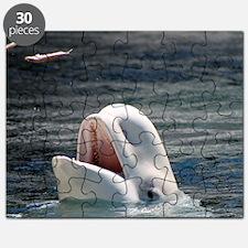 Beluga Whales 5 Puzzle